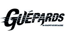 Les Guépards de Saint-Eustache
