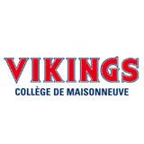 La Course des Vikings